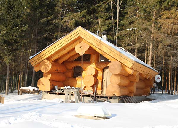 деревянная баня из бревен